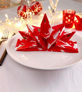 Serviettes de table Noël rouge pré-pliée imprimée poinsettia - Blancheporte