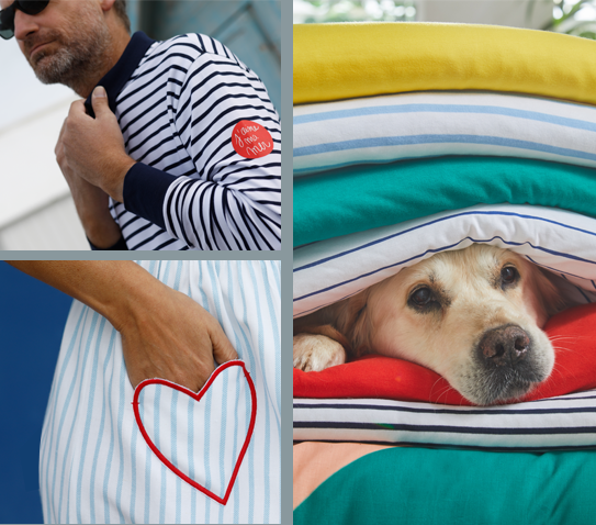 Collection Sodéco linge de maison et accessoire pour chien- pas cher - Blancheporte